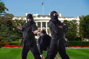 ninja white house