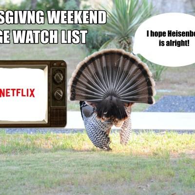 Get Your Thanksgiving Weekend Binge On!