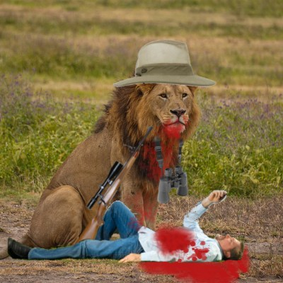 Lion kills dentist and does not feel bad about it