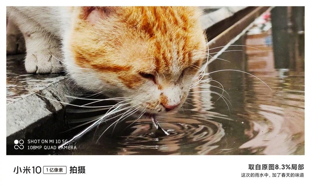Xiaomi Mi 10 Camera Sample