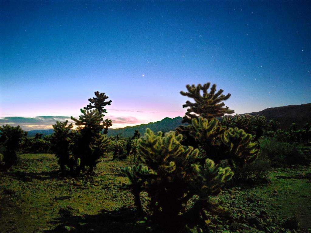 Realme X50 Pro Camera Sample - Night Mode On
