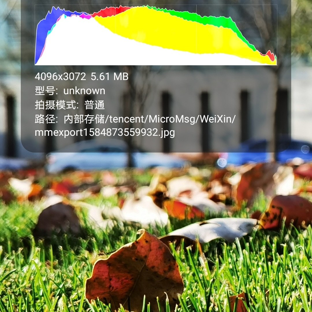 Huawei P40 Pro Camera Sample