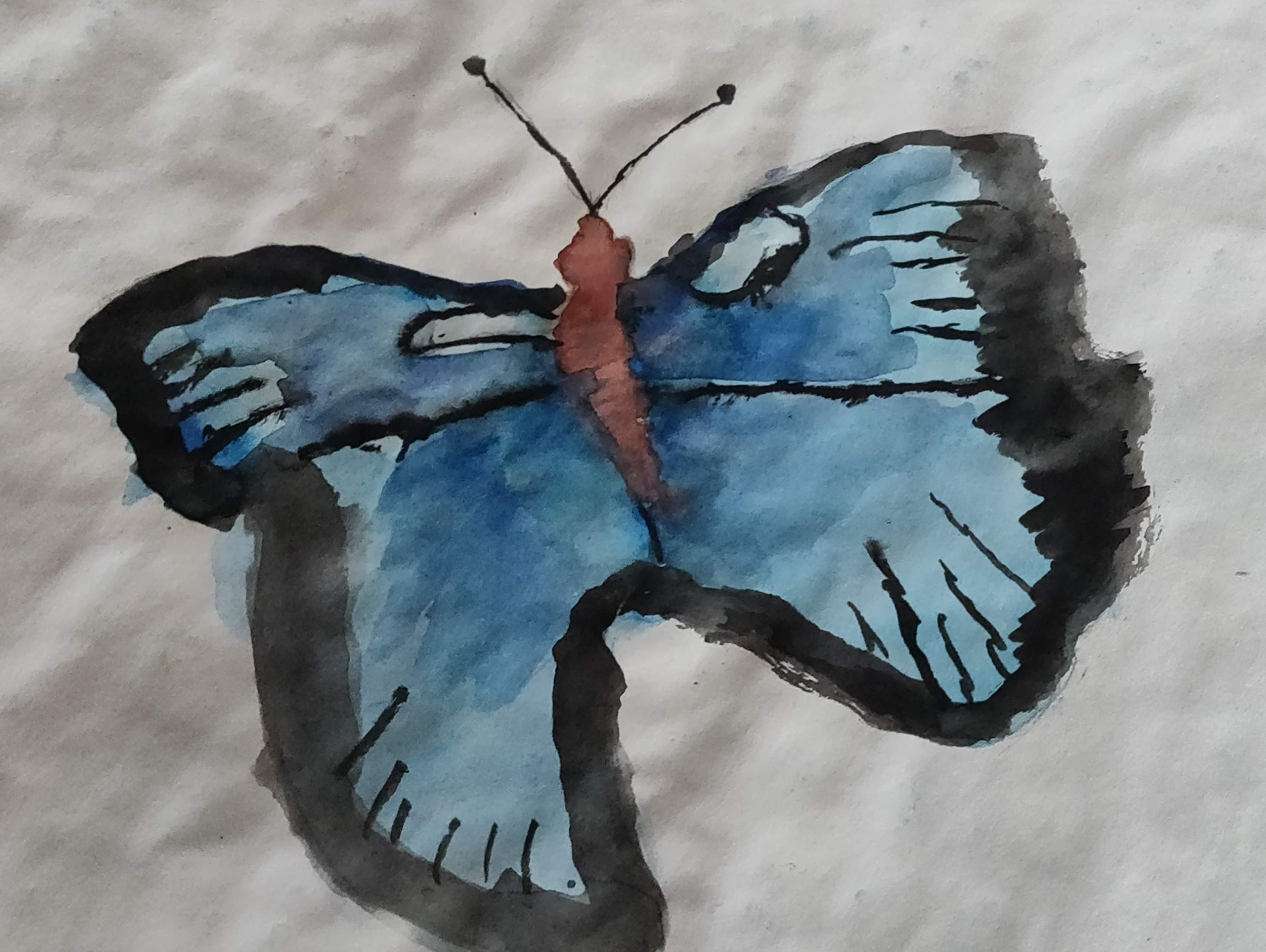 How to make a simple butterfly with water colors