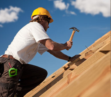 Service One, Spartan Roofing and Renovation Services