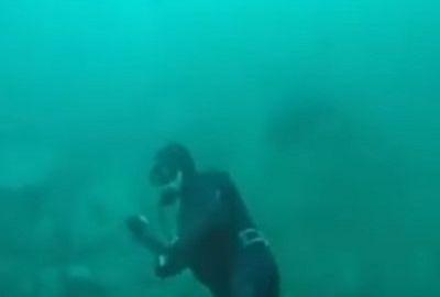 Unheimliche Begegnung im trüben Wasser