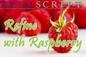 Refine_with_Raspberry_Skin_Script