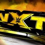 WWE: Grande nome si presenta ad un Live di NXT
