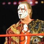 WWE: Sting e Hulk Hogan si rincontreranno