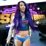 WWE: Ecco cosa hanno fatto Natalya e Sasha Banks prima del Live Event di Roma (Video)