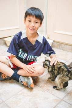 Boy petting kitten