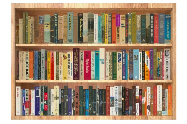 An image of a digitally-created bookshelf filled with titles from the Arnold and Jane Grisham African-American literature collection