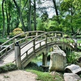bridge, park, garden