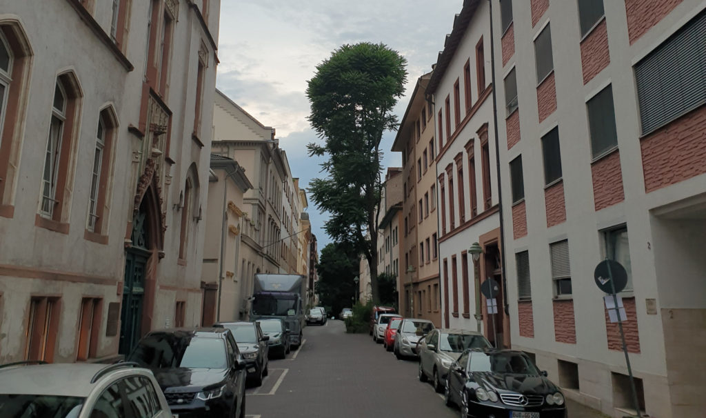 Wohnen in Mainz