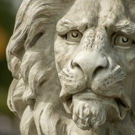 lion, statue, bust-671193.jpg