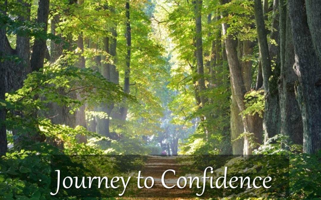 Insights from the first round of Journey to Confidence