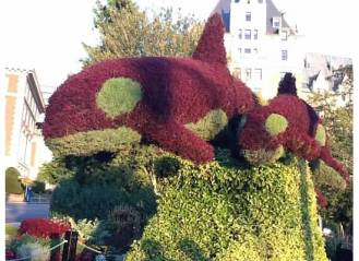 Flower Sculpture in front of Empress Hotel