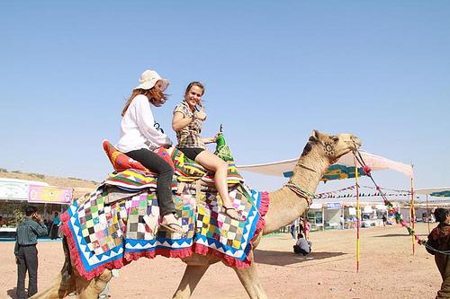 Gujarat Tourism Kutch Rann Utsav