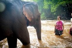 Belinda up close to an elephant, Mondulkiri