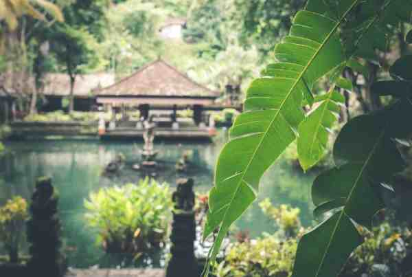 First Time Traveller Planning For Trip Bali