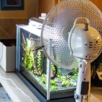 Using an Aquarium Cooling Fan - Does it Work?