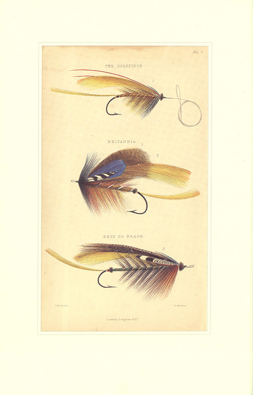 Illustration of salmon flies from The Book of the Salmon, by Edward Fitzgibbon (1850), Leonard DS/213