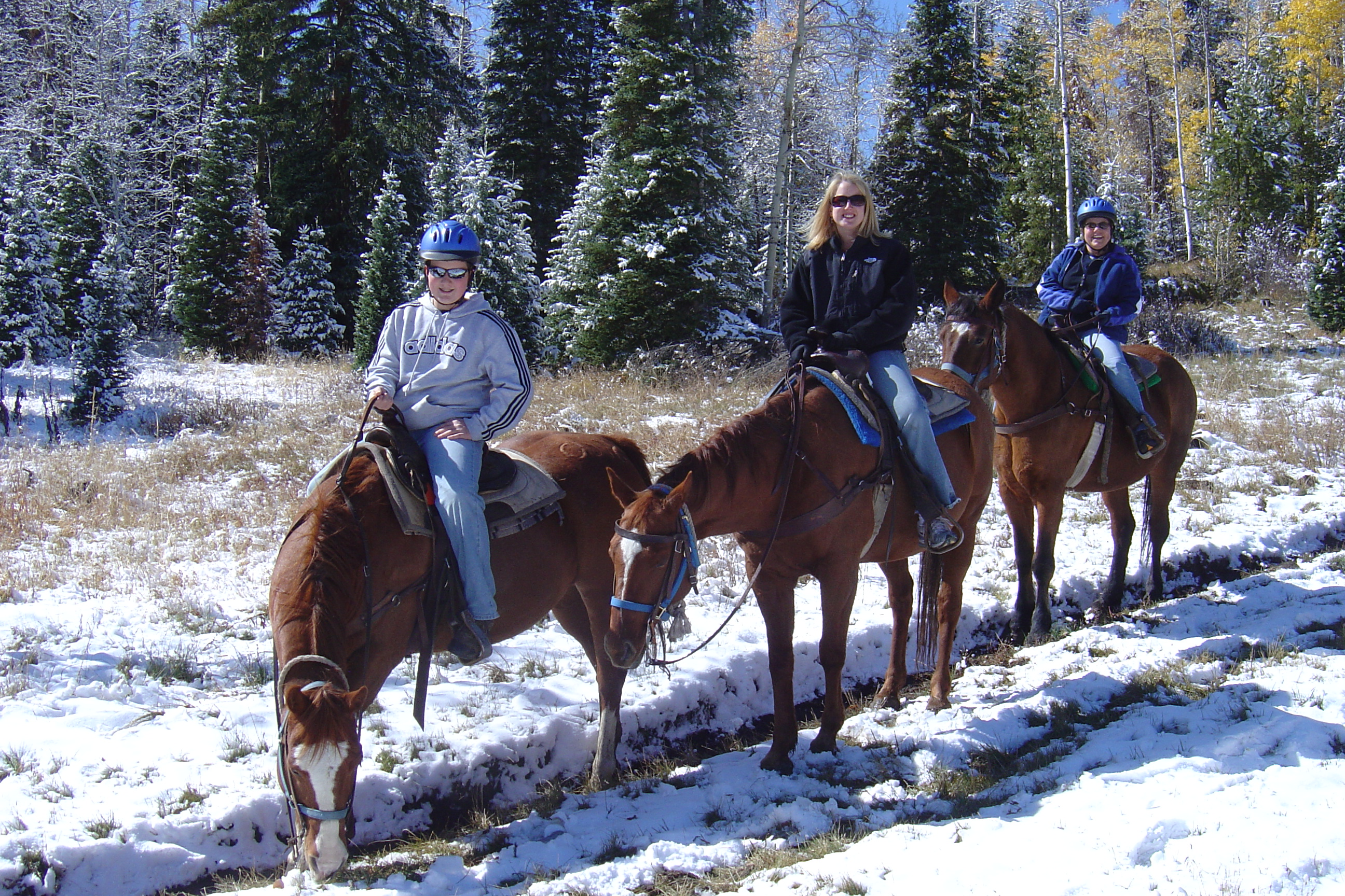 Matthew, me and Beth on our faithful steeds