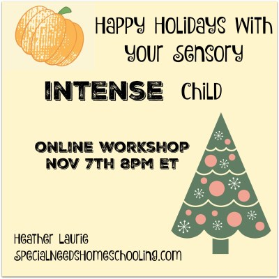 Sensory Success for the Holidays, online workshop!