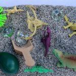 Dinosaur Sensory Box
