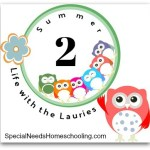 Homeschooling Organization and a Steady Routine
