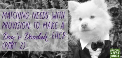 Matching needs with provision to make a dog's doodah EHCP (Part 2)