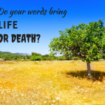 Words of Life and the Fig Tree