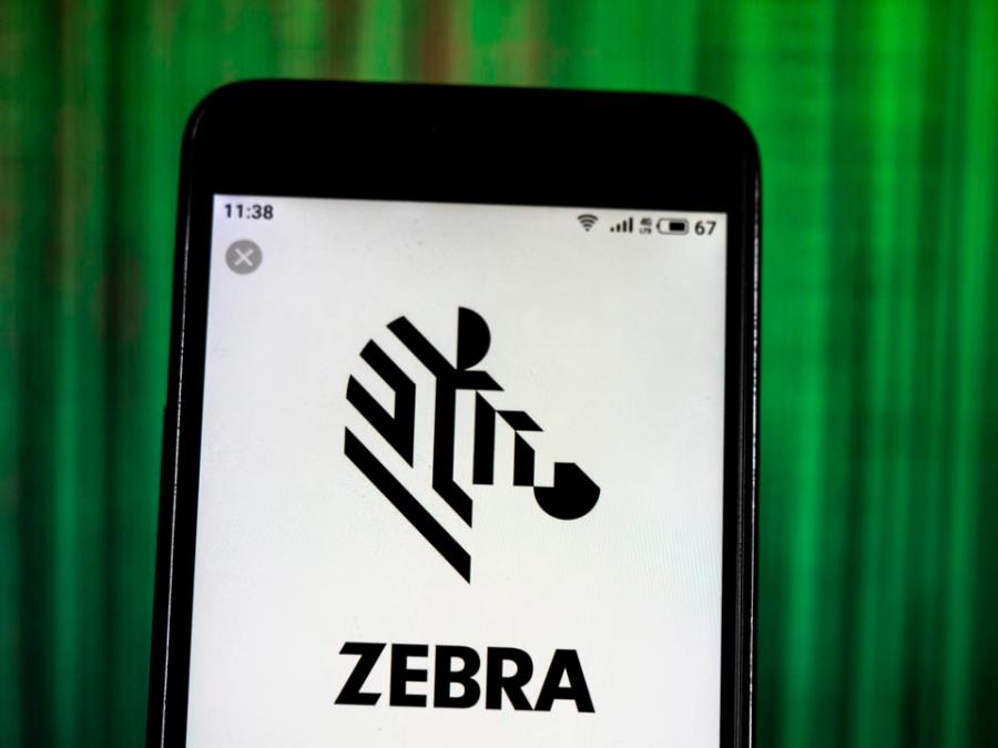 The zebra companyn featured image