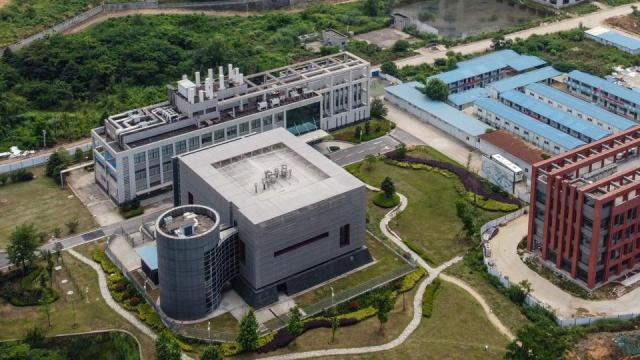 Wuhan Institute of Virology, koronawirus, COVID-19, Chiny, Norwegia