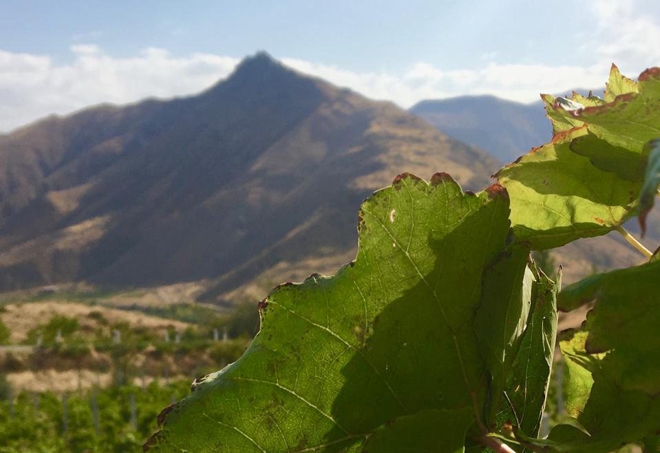 Vayots Dzor wine region in Armenia
