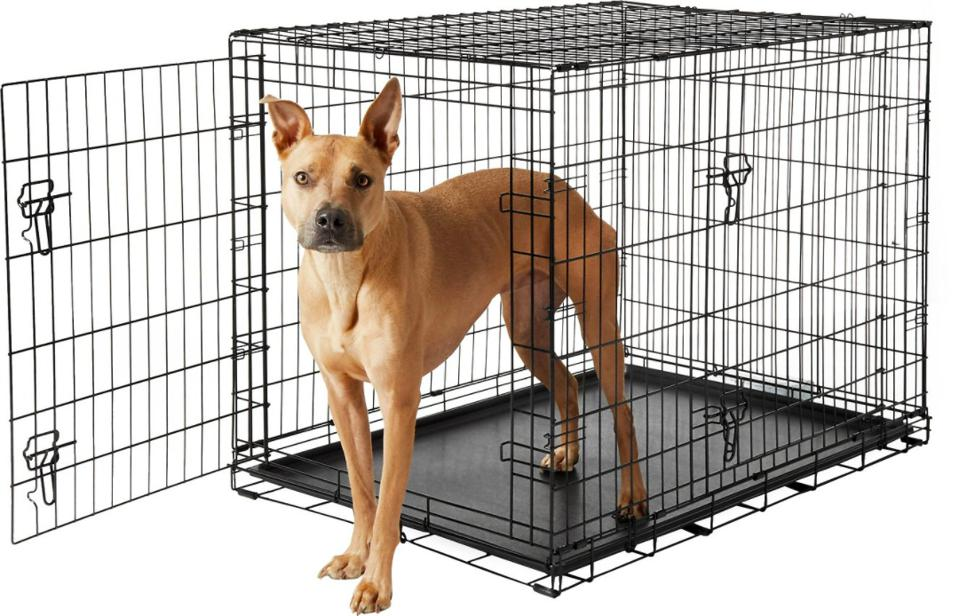 Frisco Fold & Carry Double Door Collapsible Wire Dog Crate, Large