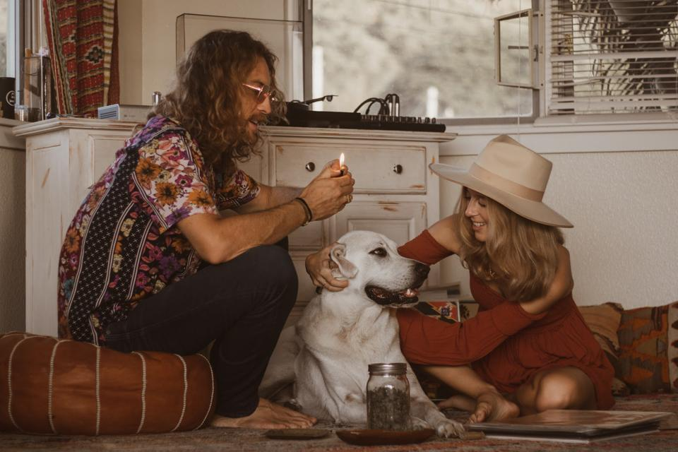 Dog, rolling a joint with friends