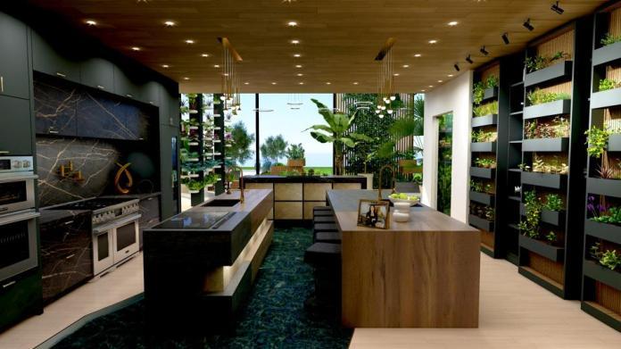 Kitchen with herb garden