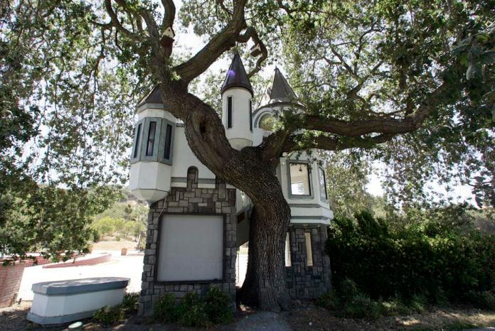 A neglected tree house at Michael Jackson's Neverland Ranch in Los Olivos, California July 2, 2009.