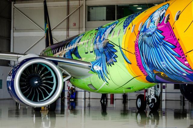 Detail of tropical aircraft livery.