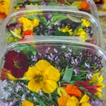 Photo of boxes of Edible Flowers