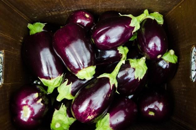 Dark Eggplant