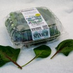 Baby Red Spinach