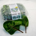Clamshell Baby Red Spinach