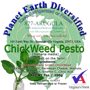 Chickweed pesto label