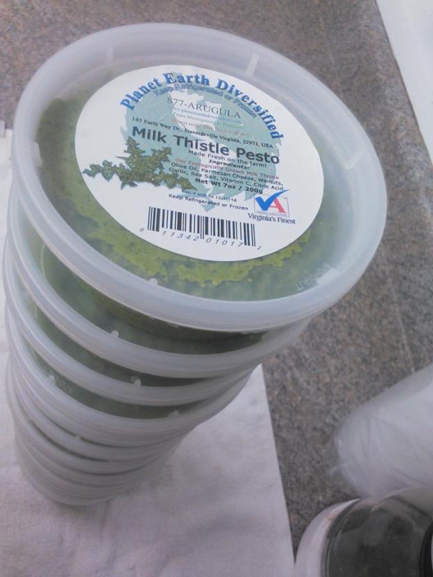 Milk Thistle Pesto