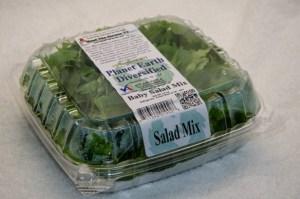 2016csa_summer_sept_10-baby-salad-mix