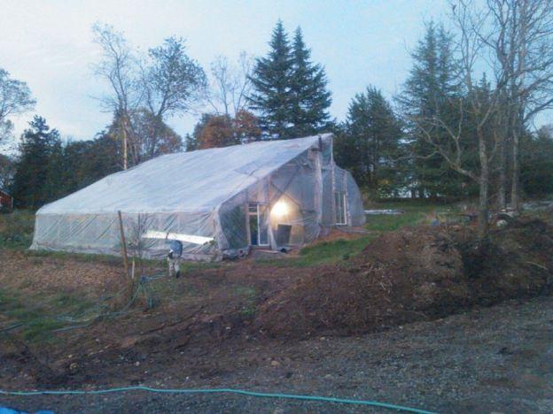 Winter_Jan_28 greenhouse