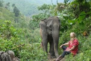 Découvrez Chiang Rai autrement : un moment humain au cœur de la nature et en dehors des sentiers battus