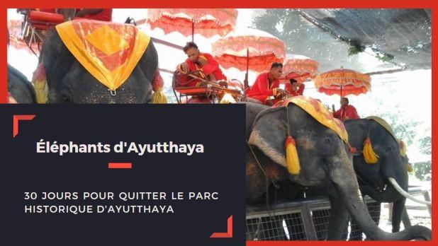 éléphants Ayutthaya