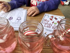 Making Science Observations in 2nd Grade